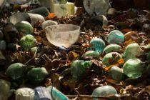 緑の中の宝探し〜ナガー・グラスファクトリー