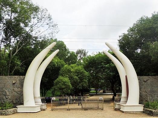 ヤンゴン・街の喧騒から抜け出してプチトリップ! 自然・動物いっぱいのローガ公園へ日帰りしてきました